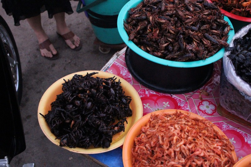 Bug snacks, Phnom Penh