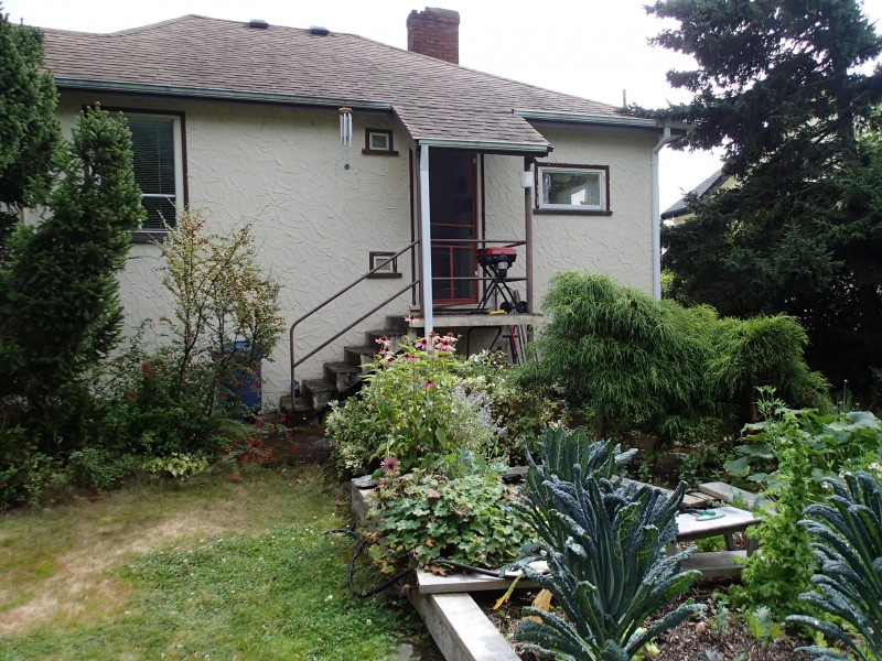 Backyard and garden