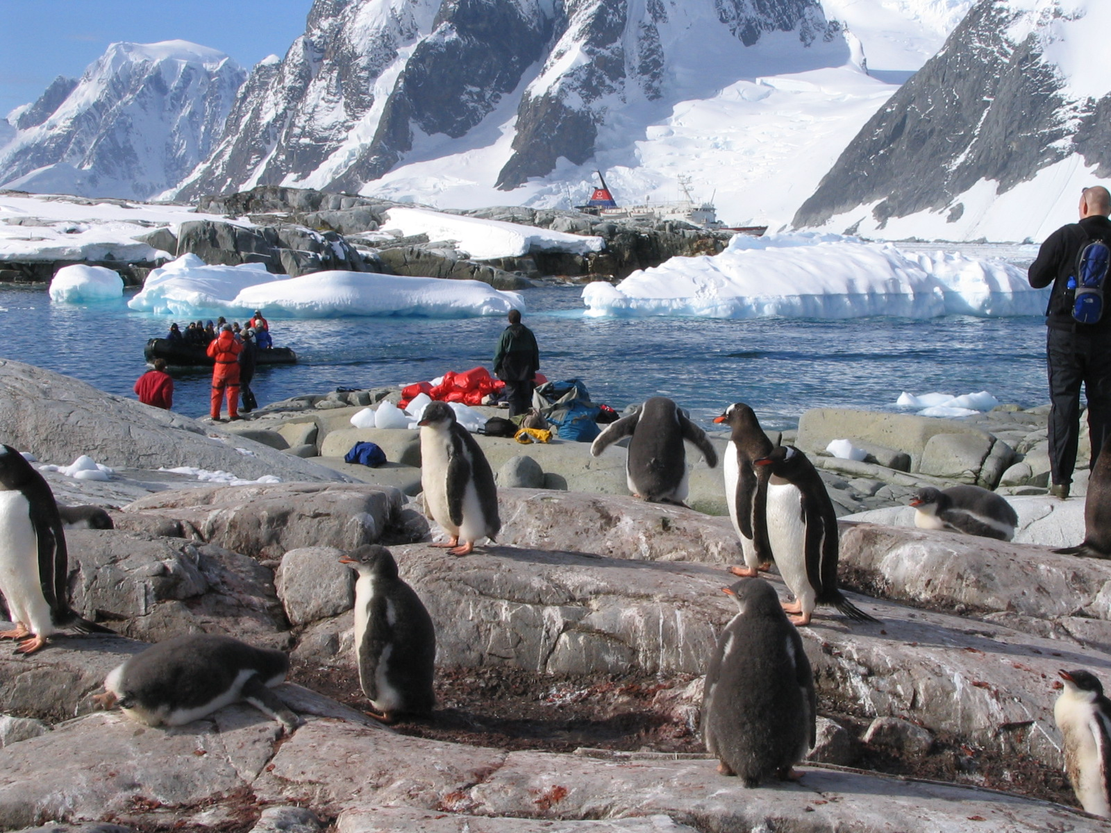 why go to antarctica a photo essay big travel nut antarctica at earth s end