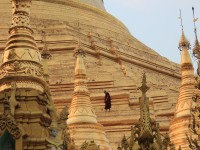 Monk walking on the main stupa at Shwedagon