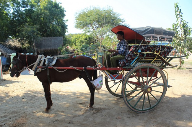 Horse cart in Bagan