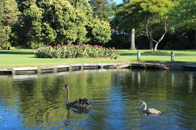Queen's Gardens