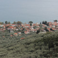 A coastal village amidst the olive trees