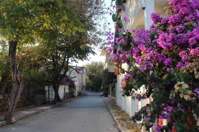 A quiet street (Büyükada)