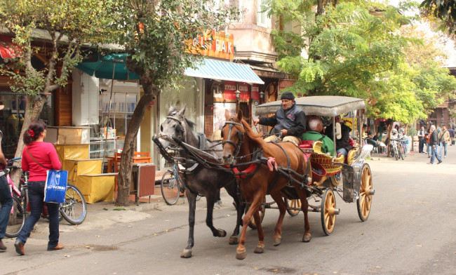 Horse-drawn carriage (Büyükada)