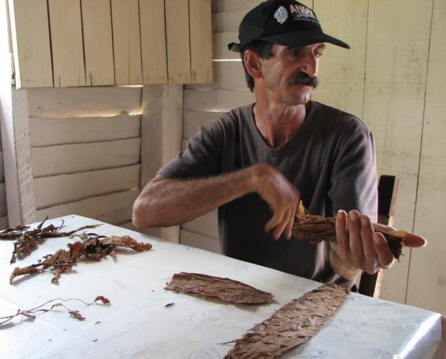 Hand-rolling a cigar (Cuba)
