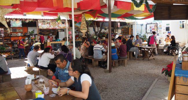 La Cosecha Organic Market (where to eat in Oaxaca)