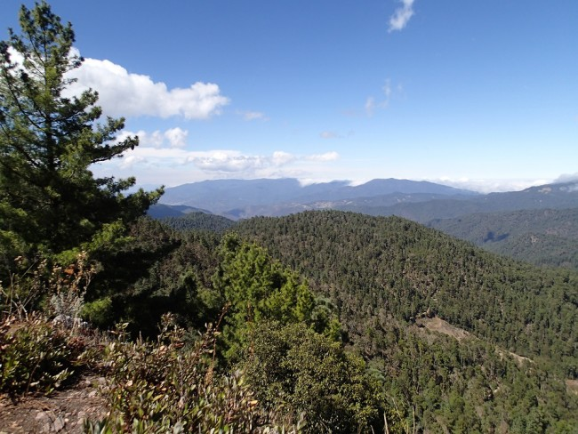 Landscape from the viewpoint (Llano Grande) (mountains around Oaxaca)