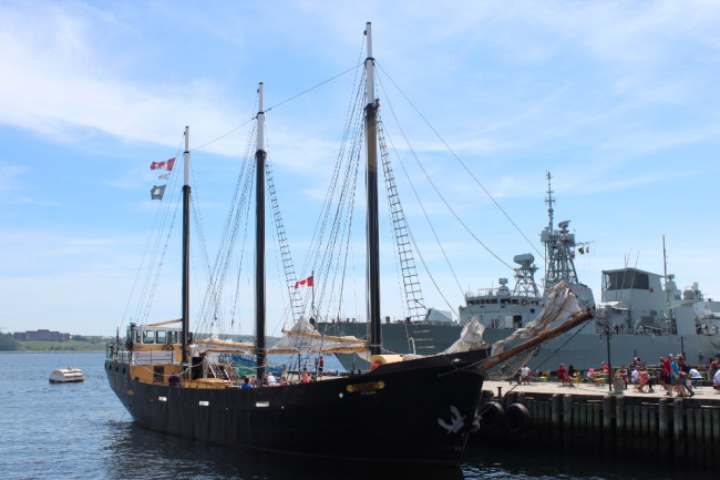 The tall ship Silva, Halifax harbour