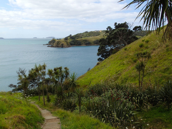Hiking around the southern headland (Waiheke, New Zealand)
