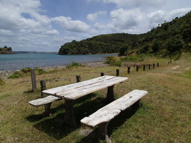 Taking a break along a hiking trail (Waiheke, New Zealand)