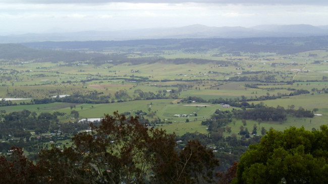 View from a lookout on Tamborine Mountain