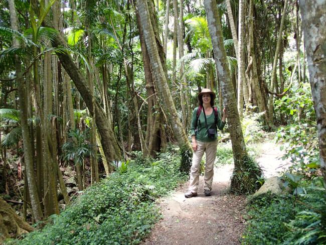 On Curtis Falls hike (Tamborine Mountain)