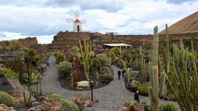 Jardin de Cactus (Lanzarote away from the resorts)
