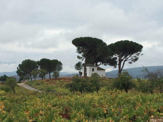 Iconic view near Valtuille de Arriba (Camino de Santiago solo)