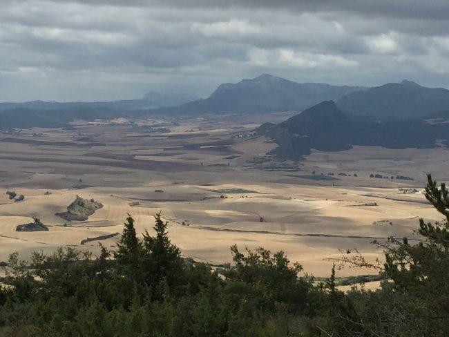 Near Villamayor de Monjardin (Camino de Santiago solo)