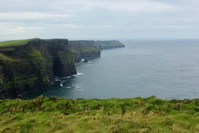 Cliffs of Moher on a rainy day (impressions of Ireland)