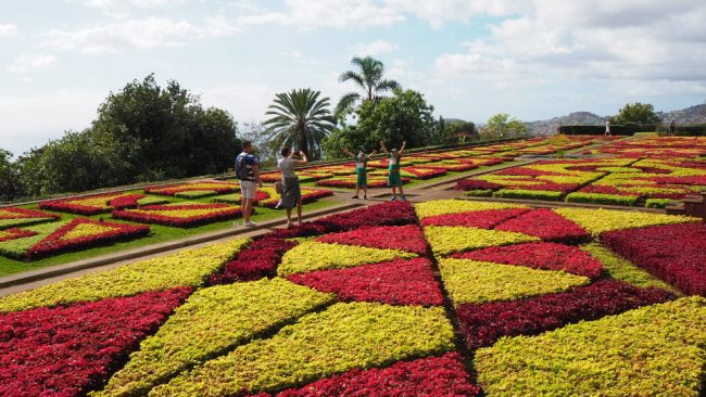 Madeira Botanical Gardens in Monte (best winter destinations in Europe)