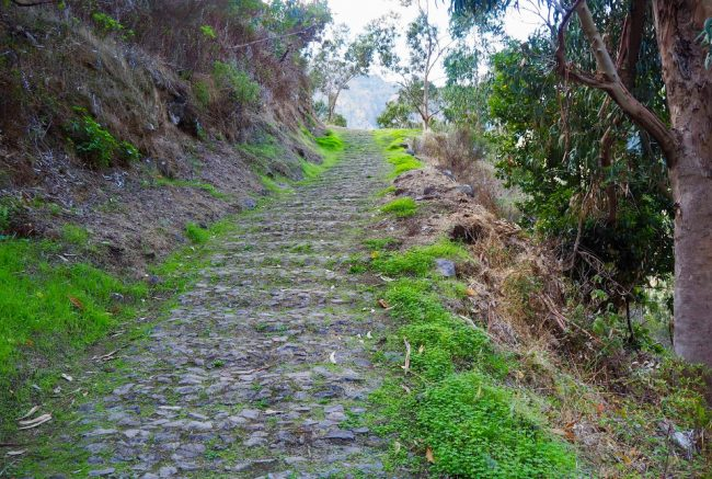 Trail from Eira do Serrado to Curral das Freiras (hikes in Madeira)