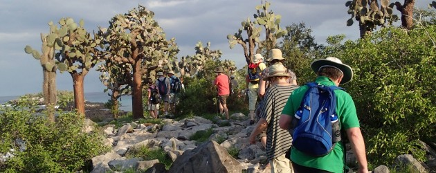 Group on Santa Fe Island