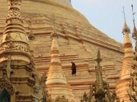 Monk walking on the main stupa at Shwedagon