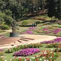 Mae Fah Luang Gardens