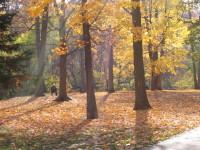 7 nature walks in Toronto