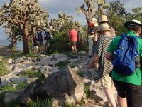 Group tour in the Galapagos